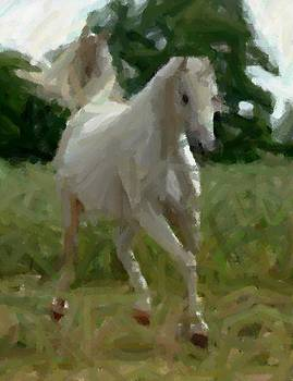 Arabian Horse Abstract by Olde Time  Mercantile