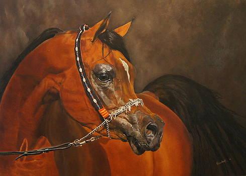 Arabian Horse by Erna Goudbeek