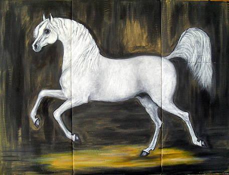 Arabian horse by Ignacio Navarro