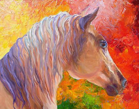 Arabian Horse by Mary Jo Zorad