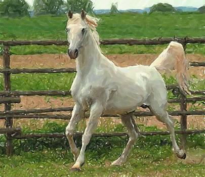 Arabian Horse Portrait In Pastels by Olde Time  Mercantile