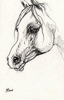 Angel Ciesniarska - Arabian horse sketch 2014 05 30d