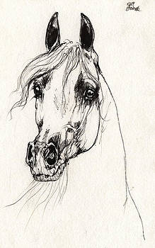 Angel Ciesniarska - Arabian horse sketch 2014 05 30e