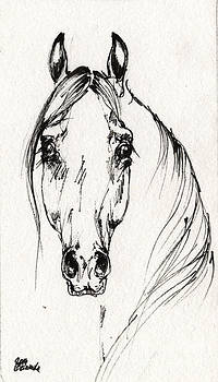 Angel Ciesniarska - Arabian horse sketch 2014 05 30f
