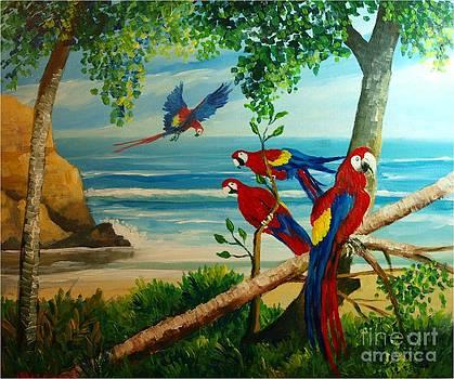 Aras on the beach by Jean Pierre Bergoeing