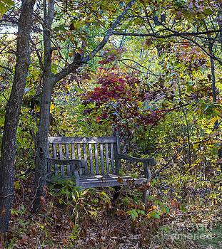 Steven Ralser - Arboretum bench