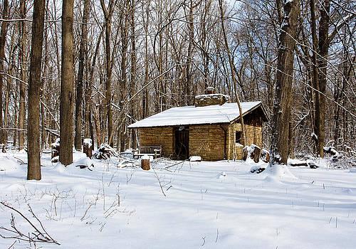 Steven Ralser - Arboretum Hut - Madison - Wisconsin