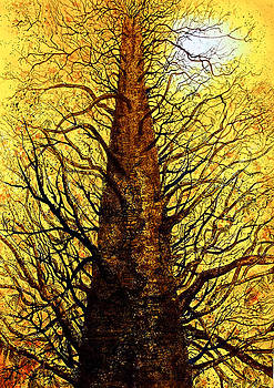 Arbre D'or by Emma Childs