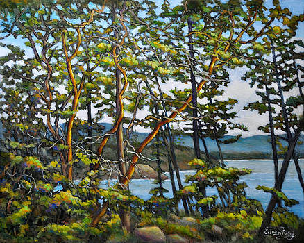 Arbutus Trees by the Shore No.15 by Eileen  Fong