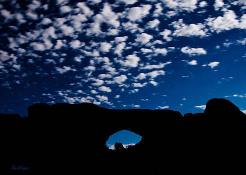 Arch Dream by Tom Wenger