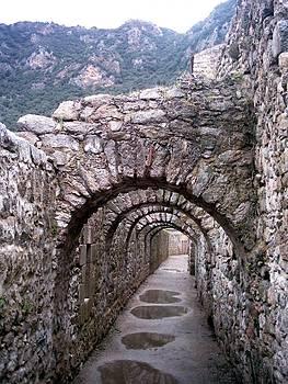 Alasdair Shaw - Arches