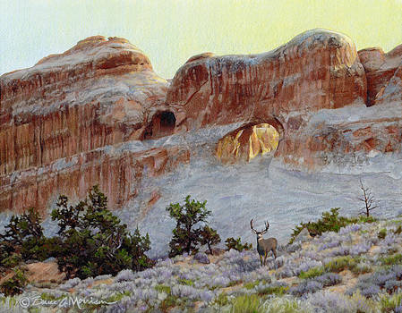 Arches Mulie by Bruce Morrison