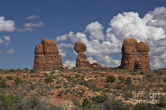 Arches National Park - 7975 by Jerry Owens