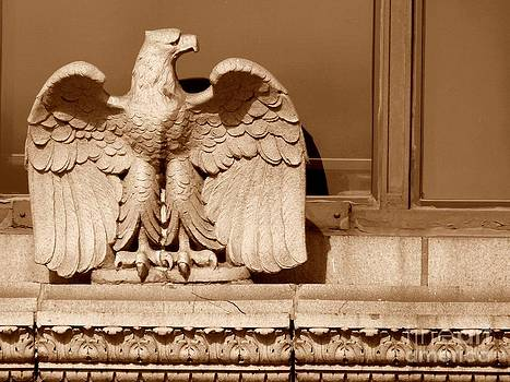 Christine Stack - Architectural Eagle on a Ledge in Downtown Portland Maine