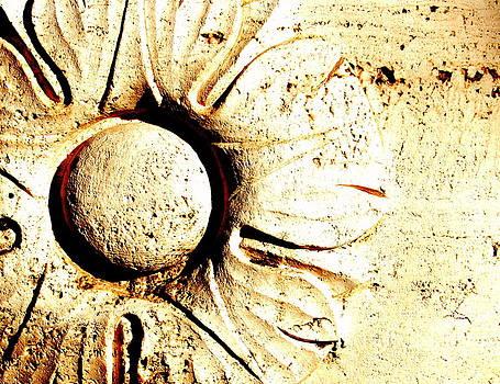 Architectural Sunflower by Mamie Gunning