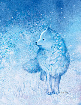 Arctic Fox by Tracy Herrmann