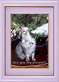 Are you my present? by Eve Riser Roberts