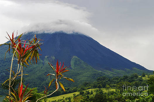 Bob Phillips - Arenal Volcano and Tropical Color