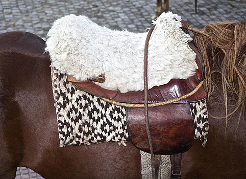 Venetia Featherstone-Witty - Argentine Gaucho Saddle
