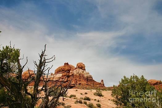 Arhces National Park Scenery by Katherine Karsten