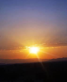 Judy Hall-Folde - Arizona by Night