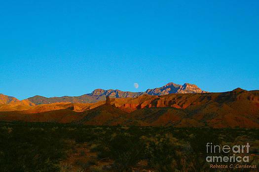 Arizona Dusk by Rebecca Christine Cardenas