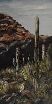 Arizona Landscape by Shirley Watts