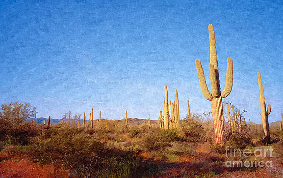 Arizona by Larry Stolle