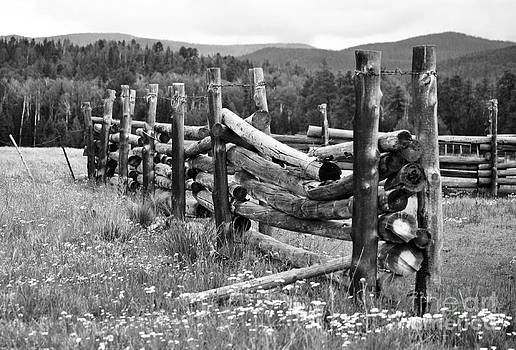 Arizona Pole Corral  by Juls Adams
