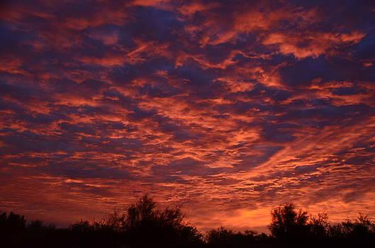 Arizona Sky by Tina Hannaford