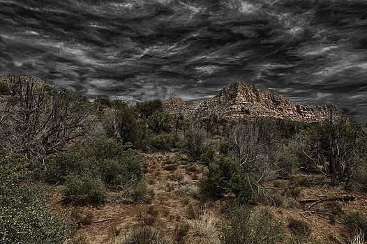 Arizona Summer by Darren  Cornea