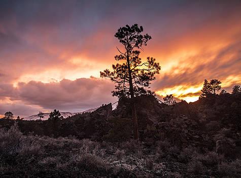 Arizona Sunset by Craig Brown