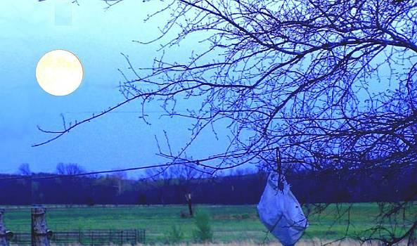 Arkansas Moonlight by Brian Hubmann
