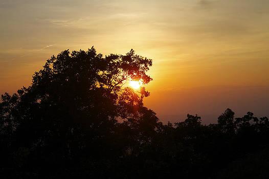 Arkansas Sunset by Danielle Allard
