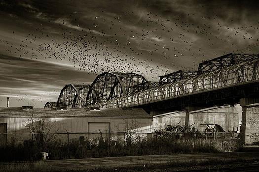 Bryan Scott - Arlington Bridge