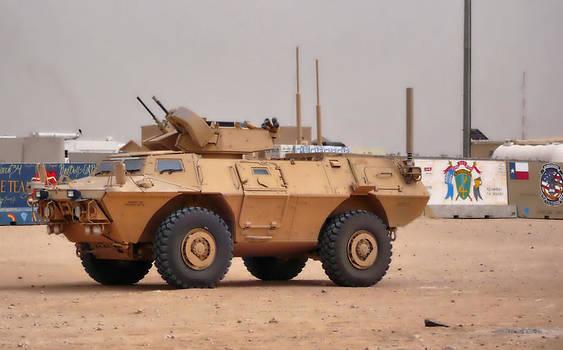 Army Stryker  by Thomas  MacPherson Jr