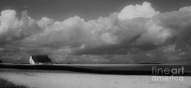 Aroostook wheat field by Christopher Mace