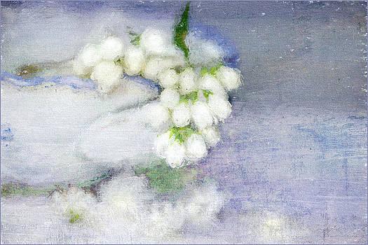 Arrangement by Annie Snel