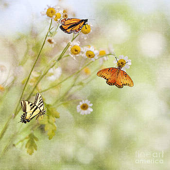 Arrival of Spring by Susan Gary
