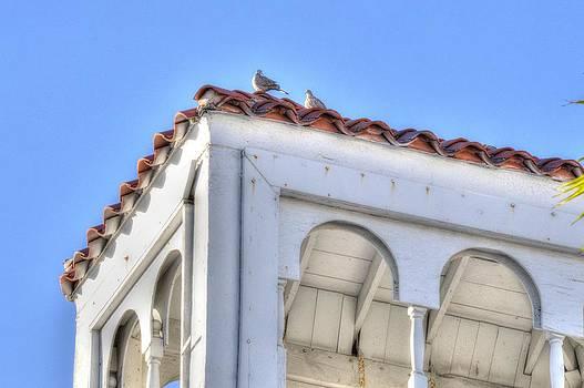 Frederic BONNEAU Photography - Art Deco Roof Top