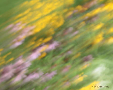Art of Floral Movement Abstract - Dancing Healing flowers - Echinacea and Yellow Coneflowers by Alex Khomoutov