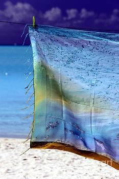 Sophie Vigneault - Art on the Beach
