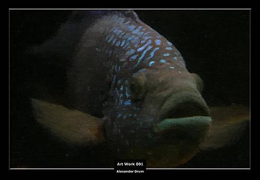 Alexander Drum - Art Work 001 Fish