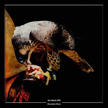 Alexander Drum - Art Work 078 Hawk
