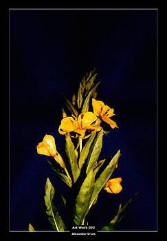 Alexander Drum - Art Work 092 yellow flower