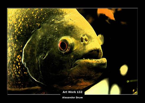 Alexander Drum - Art Work 132 Piranha