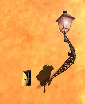 Susan Rovira - Artful Street Lamp