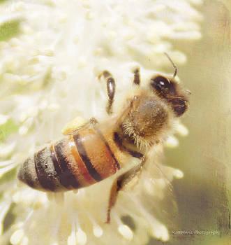 Artist Bee 2 by Vanessa Parent