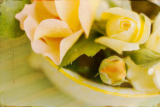Artistic Vintage Yellow Roses by Paula Ohreen