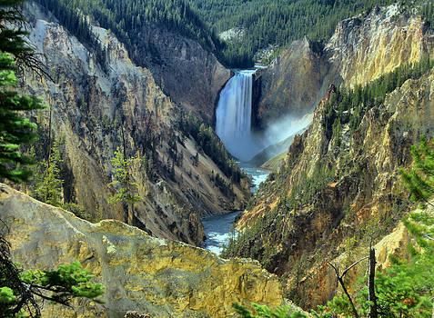 Matthew Winn - Artists Point Yellowstone